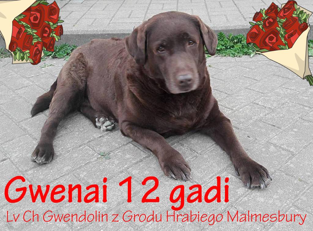 20180606_Gwena3ed